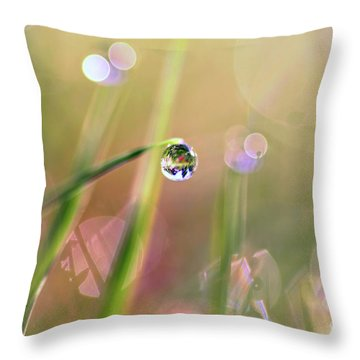 The World In A Drop Throw Pillow by Sylvia Cook
