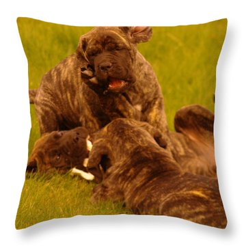 The Wrestling Match Throw Pillow by Jeff Swan
