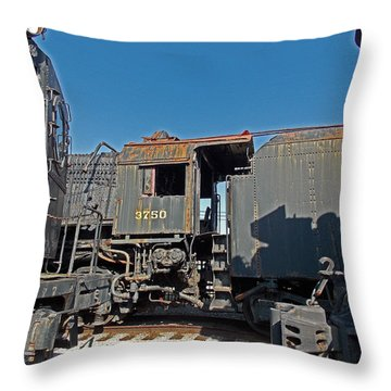 The Yards Throw Pillow by Skip Willits