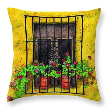 The Yellow House Throw Pillow by Lew Davis