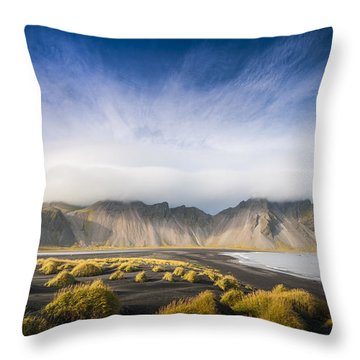 The Young Man Agreed Throw Pillow