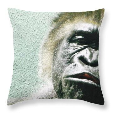 Theirs No Place Like Home Their Is No Place Like Home Their Is No Place Like Home Throw Pillow by Gerald Strine