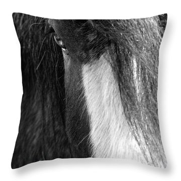 Theoden In Bw Throw Pillow