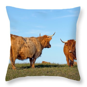 There Can Be Only One Highland Cow Throw Pillow