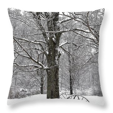 There Is A Kind Of Hush Throw Pillow by Diane E Berry