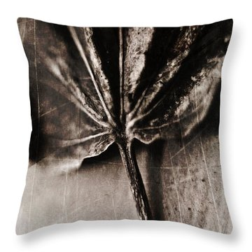 Throw Pillow featuring the photograph There Is A Season by Aaron Berg