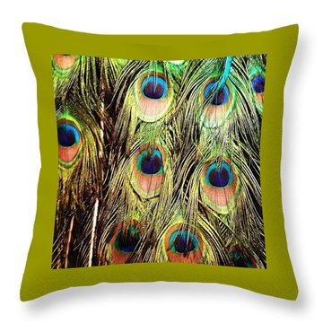 Peacock Feathers Throw Pillow by Blenda Studio