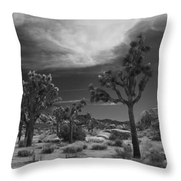 There Will Be A Way Throw Pillow by Laurie Search