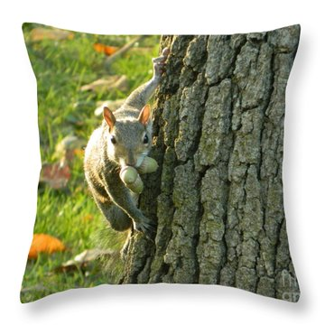 Throw Pillow featuring the photograph These Nuts Are All Mine by Emmy Marie Vickers