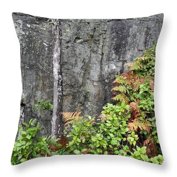 Throw Pillow featuring the photograph Thetis In Fall by Cheryl Hoyle
