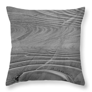 Thin Ice Throw Pillow by Tim Good