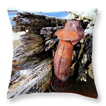 Things That Make You Go Hmm Throw Pillow by Ed Weidman