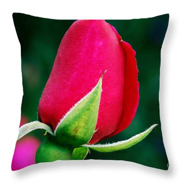 Things To Come Throw Pillow by Wendy Wilton