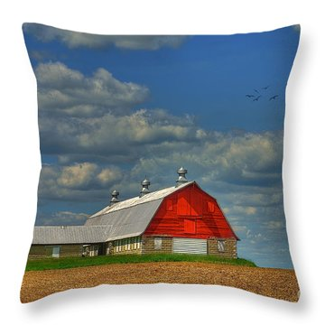 Things Unnoticed At The Time Throw Pillow by Lois Bryan