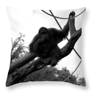 Throw Pillow featuring the photograph Thinking Of You Black And White by Joseph Baril
