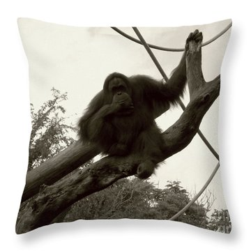 Throw Pillow featuring the photograph Thinking Of You Sepia by Joseph Baril