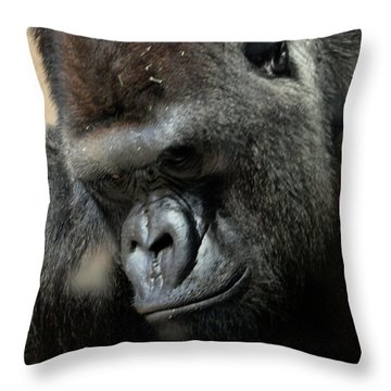 Thinking Throw Pillow by Steven Reed