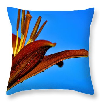Thirsty Lily In Hdr Art Throw Pillow