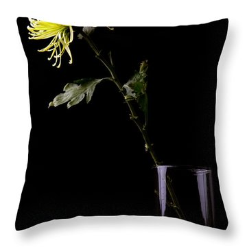 Throw Pillow featuring the photograph Thirsty by Sennie Pierson