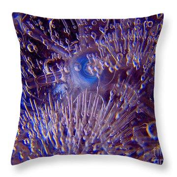 Thirty Two Degrees Throw Pillow by Cedric Hampton