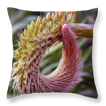 This Bud's For You Throw Pillow by Richard Engelbrecht