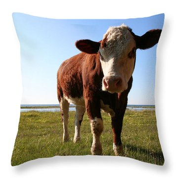 This Is My Grass Throw Pillow