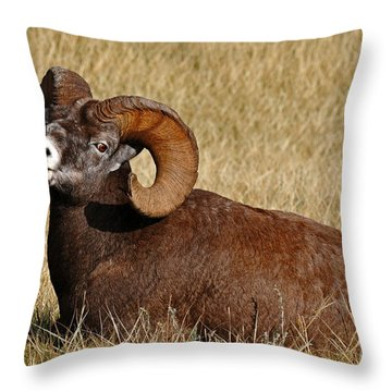 This Is My Space Throw Pillow by Vivian Christopher