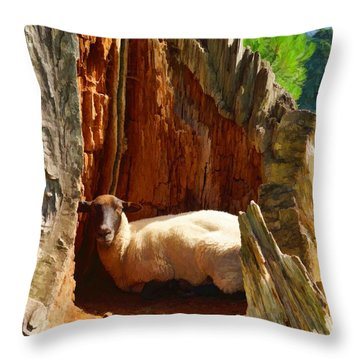 This Is My Spot Throw Pillow by Ron Harpham
