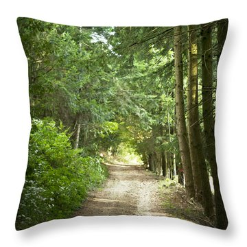 This Is The Way Walk In It Throw Pillow by Georgia Fowler
