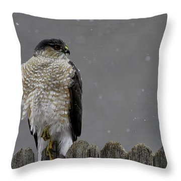 This Magic Moment    Edition  2 Of 10 Throw Pillow