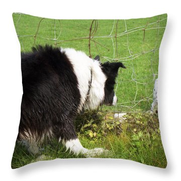 This Must Be Love. Throw Pillow by Michael Haslam