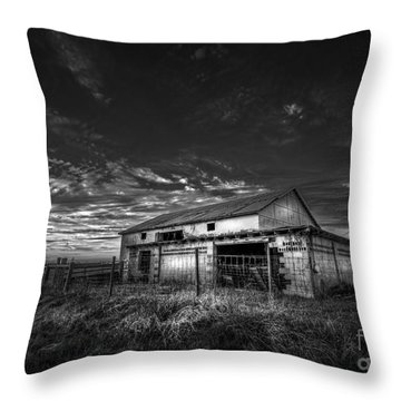 This Old Barn-b/w Throw Pillow
