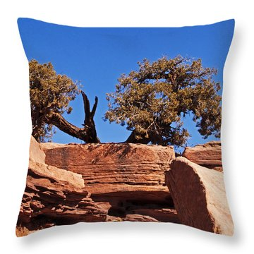 This Way Or That Throw Pillow by Bob and Nancy Kendrick