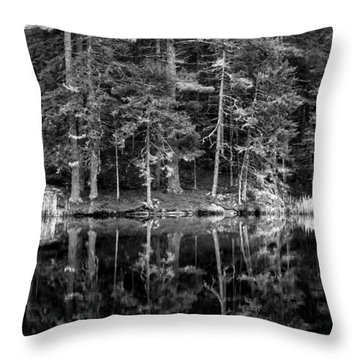 This World Of Ours Throw Pillow by Greg DeBeck