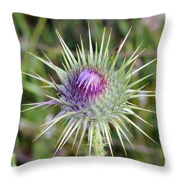 Thistle Flower Throw Pillow by George Atsametakis