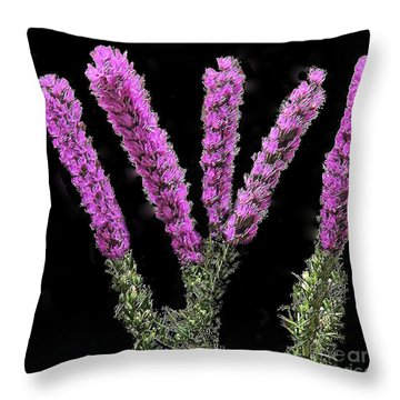 Throw Pillow featuring the photograph Thistle Flower by Merton Allen