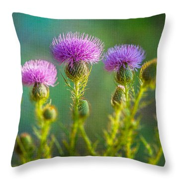Thistle In The Sun Throw Pillow