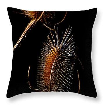 Thistle Light Throw Pillow