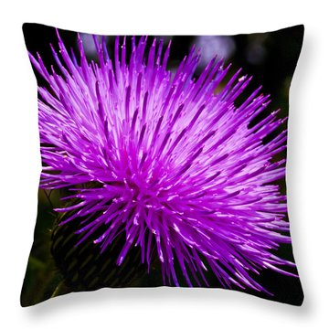 Thistle Throw Pillow by Mark Alder