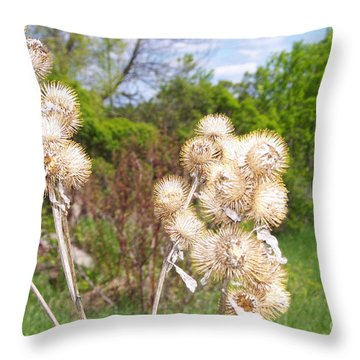 Thistle Me This Throw Pillow by Mary Mikawoz
