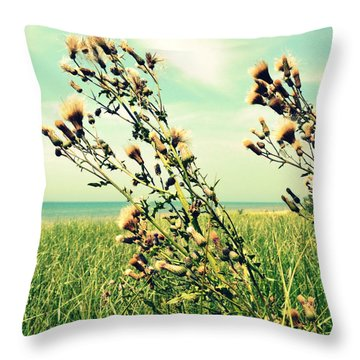 Thistle On The Beach  Throw Pillow by Michelle Calkins