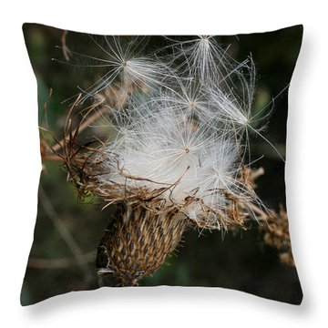 Thistle Seeds Throw Pillow by E B Schmidt