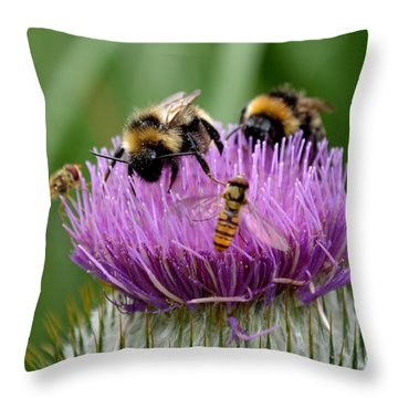 Thistle Wars Throw Pillow by Scott Lyons