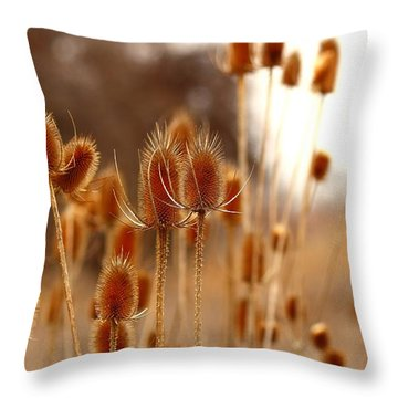 Throw Pillow featuring the photograph Thistles by Lynn Hopwood