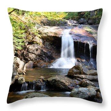 Thompson Brook Falls Throw Pillow by Brett Pelletier