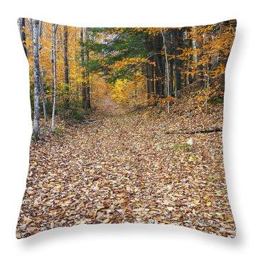 Thornton Gore Road - Thornton New Hampshire Throw Pillow by Erin Paul Donovan