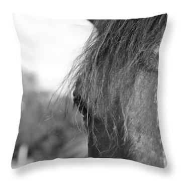 Thoroughbred B/w Throw Pillow