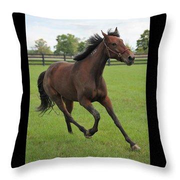 Standardbred Throw Pillow