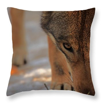 Those Eyes Throw Pillow by Karol Livote