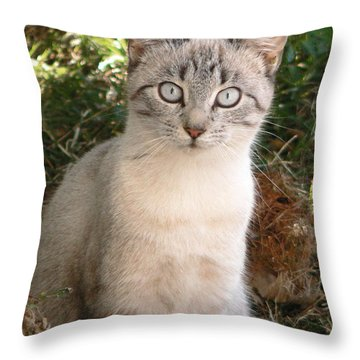 Those Eyes Throw Pillow by Laurel Powell